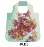 -HV.B5