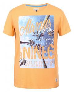 оранжевый(443)