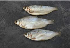Рыба реализуется только коробками по 5 кг.
