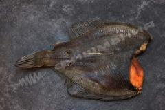 Вес рыбы от 350 г до 450 г