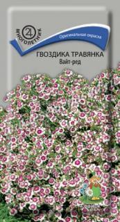 Гвоздика травянка Вайт-ред