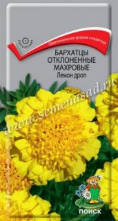 Лемон Дроп