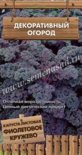 Капуста листовая Фиолетовое кружево