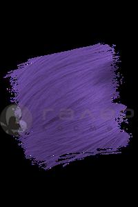 Violette / Фиолетовый
