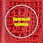 Красный кайман
