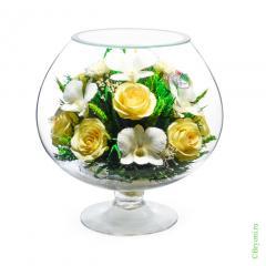 розы, орхидеи, стекло