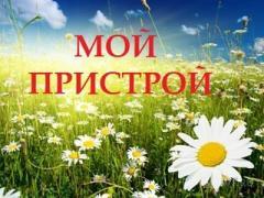 -СБОР 10 ШТ