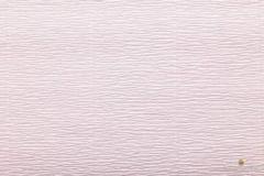 569 бело-розовая